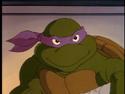 2500592-turtle584