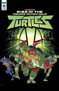 Idw-publishing-rise-of-tmnt-20180430