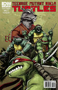 390px-TMNT IDW no 2 cover