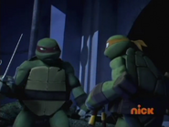 Raph and Mikey fighting