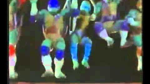Ninja Turtles: The Next Mutation/Theme song