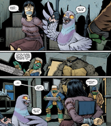 IDW Pigeon Pete