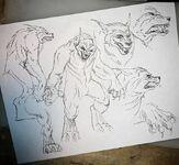 Wolfy6