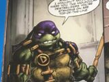 Donatello (Crisis in a Half Shell)