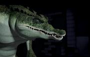 TMNT 2012 Screenshot 3