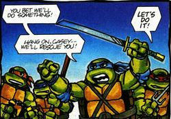 Turtles cyril