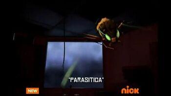 Parasitica