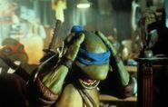 Teenage Mutant Ninja Turtles 13216 Medium