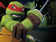 Raphael-image3