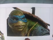 Leonardo 2014 face art