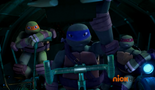 Turtle Sub7