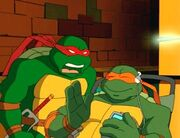 Raph and Mikey 1
