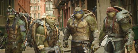 Turtles oots