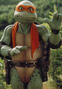 2509045-turtle1340