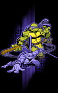 426563-tmnt don poster