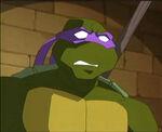2500584-turtle443
