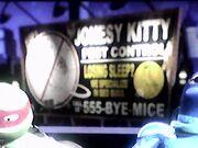 JonesyKitty