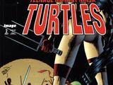 Teenage Mutant Ninja Turtles issue 2 (Image)