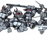 Weapons used by the Teenage Mutant Ninja Turtles