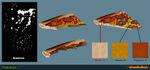 PizzaSliceA