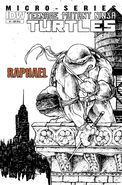 Idw - raphael variant cover 2
