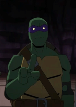 Batman vs tmnt - donatello