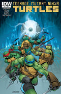 Teenage Mutant Ninja Turtles 041-000