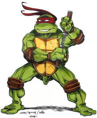 Michelangelo Mirage Tmntpedia Fandom
