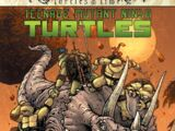 Teenage Mutant Ninja Turtles: Turtles in Time (IDW)