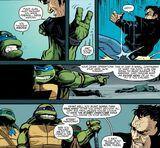 IDW Lupo Turtles