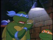 Turtlecom4