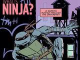 What is Ninja?