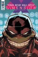 TMNT- Dimension X -3 Alternate Cover by Khary Randolf