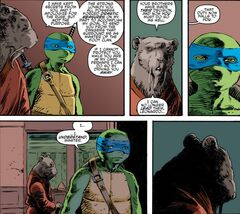 IDW Splinter alienate