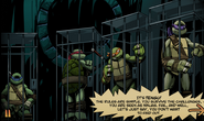 Turtles in Comic