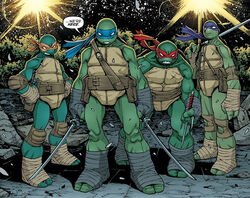 IDW's Teenage Ninja Mutant Turtles