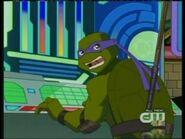 Turtles5