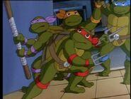2272443-turtles53
