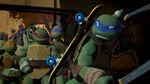 Turtles hero talk