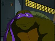 2500575-turtle274