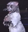 Splinter (Stage Show)