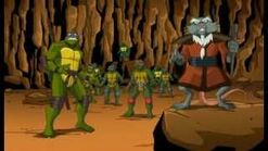 Splinter and 8 Turtles