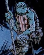 Old donatello idw