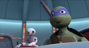 2012-Donatello-404