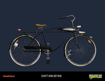 Bicicleta de casey 001