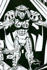IM Lady Shredder