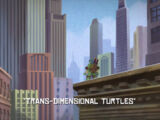 Trans-Dimensional Turtles