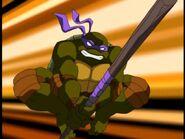 2500577-turtle296