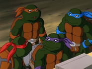 Divide and conquer 52 - turtles