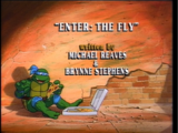 Enter The Fly